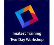 SineImage  Training